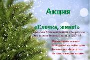 "Акция ""Ёлочка живи!"""
